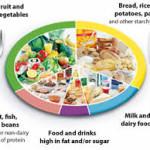 Eatwell plate, health, nutrition, paleo